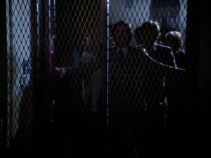 steele caged