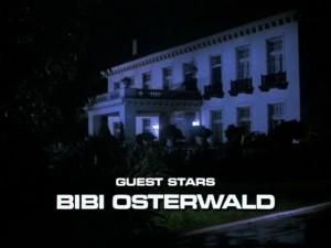 bibiosterwald